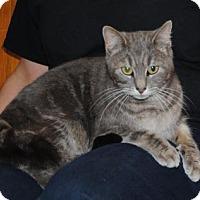 Adopt A Pet :: Roxie - Parsons, KS