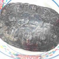 Adopt A Pet :: *DOBY - Palmer, AK