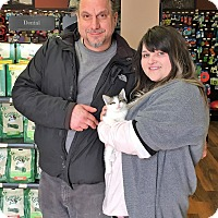 Adopt A Pet :: Sprout - River Edge, NJ