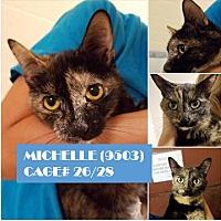 Adopt A Pet :: MICHELLE - Flint, MI