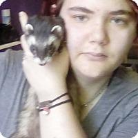 Adopt A Pet :: Luca - Acworth, GA