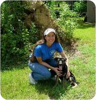 German Shepherd Dog Mix Puppy for adoption in Kingwood, Texas - Petey