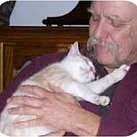 Adopt A Pet :: Athos - Fayette, MO