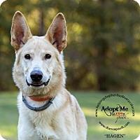 Adopt A Pet :: Hagan - Montgomery, AL