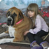Adopt A Pet :: Bernice - Missouri City, TX