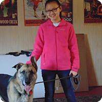 Adopt A Pet :: Thunder - Greeneville, TN
