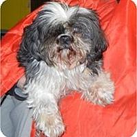 Adopt A Pet :: Garth ADOPTED!! - Antioch, IL