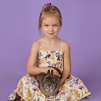 Adopt A Pet :: Chunky Monkey aka Bam Bam - Seattle c/o Kingston 98346/ Washington State, WA