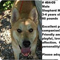 Adopt A Pet :: # 464-09 - ADOPTED! - Zanesville, OH