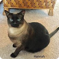 Adopt A Pet :: Hannah - Pinckney, MI