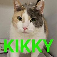 Adopt A Pet :: Kiki - Colfax, IL