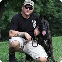 Adopt A Pet :: Uhli - Wattertown, MA
