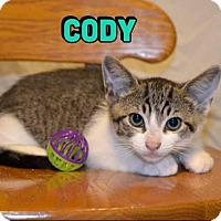 Adopt A Pet :: Cody - Trevose, PA