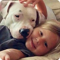 Adopt A Pet :: Kiki - Orlando, FL