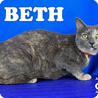 Adopt A Pet :: Beth - Carencro, LA