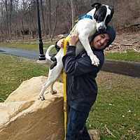 Adopt A Pet :: Griff ~ Boyfriend Material! - Caldwell, NJ