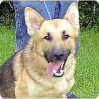 Adopt A Pet :: Jason - Pike Road, AL