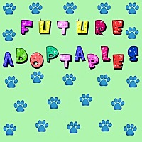 Adopt A Pet :: FUTURE ADOPTABLES - Delaware, OH