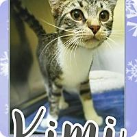 Adopt A Pet :: Kimi - Edwards AFB, CA