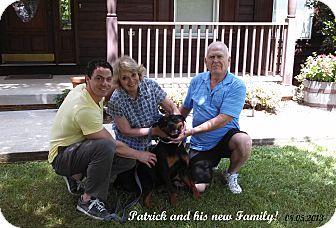 Rottweiler Dog for adoption in Darlington, Maryland - Patrick