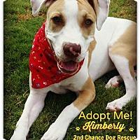 Adopt A Pet :: Kimberly - Queen Creek, AZ