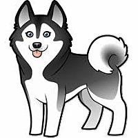 Adopt A Pet :: URGENT on 4/5 SAN BERNARDINO - San Bernardino, CA