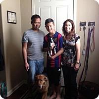 Adopt A Pet :: Treble - Sacramento, CA
