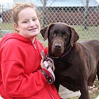 Adopt A Pet :: Skye-Prison Graduate - Elyria, OH