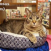Adopt A Pet :: Kansas - Bentonville, AR