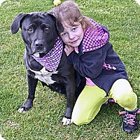 Adopt A Pet :: Jackie mellow - Sacramento, CA