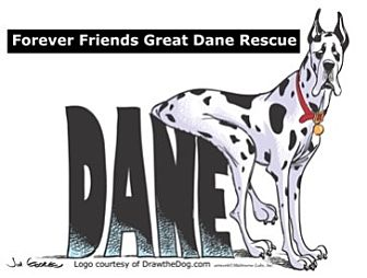 Great Dane Dog for adoption in Springfield, Illinois - FFGDR