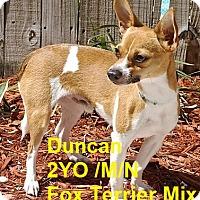 Adopt A Pet :: Duncan - Englewood, FL