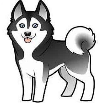 Siberian Husky Mix Dog for adoption in San Bernardino, California - URGENT on 4/5 SAN BERNARDINO