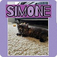 Adopt A Pet :: Simone - Palmdale, CA