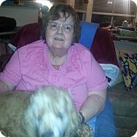 Adopt A Pet :: Karnak - Phoenix, AZ