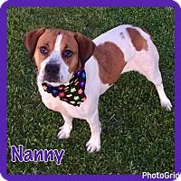 Adopt A Pet :: Nanny - Jasper, IN
