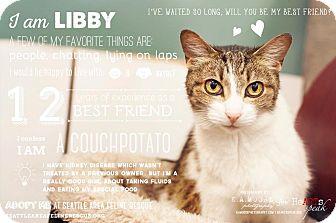 Domestic Shorthair Cat for adoption in Shoreline, Washington - Libby
