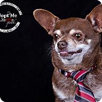 Adopt A Pet :: Bubba - Lodi, CA