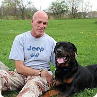 Adopt A Pet :: Sparky - Elyria, OH