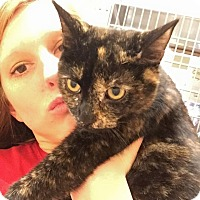 Adopt A Pet :: Easter - McDonough, GA
