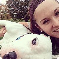 Adopt A Pet :: Kingston - WARREN, OH