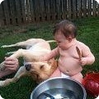 Adopt A Pet :: Sadie - Alliance, NE