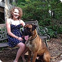 Adopt A Pet :: Rocco - Marietta, GA