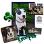 Photo 1 - American Pit Bull Terrier/American Staffordshire Terrier Mix Dog for adoption in Colleyville, Texas - Trooper
