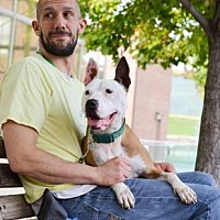 Adopt A Pet :: Jacob - Philadelphia, PA