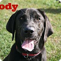 Adopt A Pet :: Brody - Brazil, IN