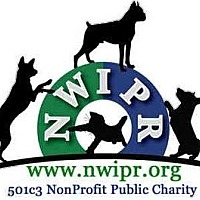 Adopt A Pet :: **ADOPTION EVENT** - Lynnwood, WA