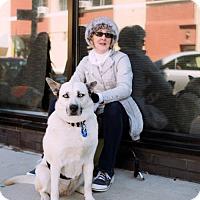 Adopt A Pet :: Maggie Gyllenhaal - Brooklyn, NY