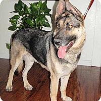 Adopt A Pet :: Phoenix - Pleasant Grove, CA
