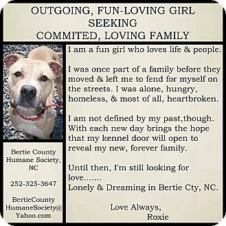 Boxer Mix Dog for adoption in Powellsville, North Carolina - ROXANNE